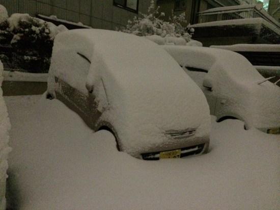 大雪2014.2.8川越市、車埋まる
