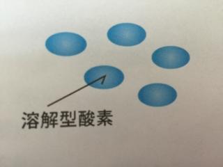 溶解型酸素、ガス化、小さい