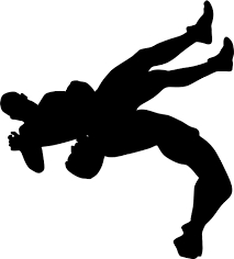 総合格闘技、柔術、投げ、関節