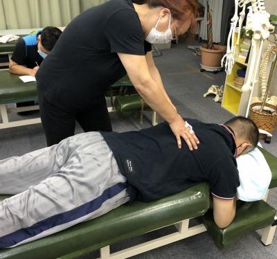 セミナー,関節ニュートラル整体,背骨,椎骨,脊椎,矯正
